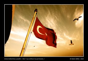 Turkey Flag by serezmetin