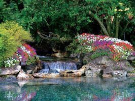 Garden with waterfall stock 13 by FairieGoodMother