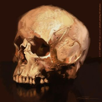 Digital painting skull study by JeffStahl