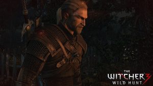 The Witcher 3 wallpaper 2 by Romix44
