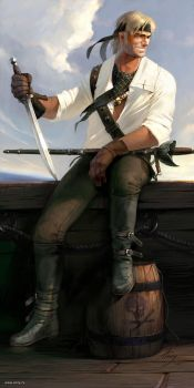 Pirate by anry