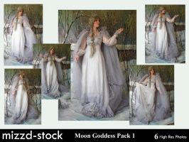 Moon Goddess Pack 1 by mizzd-stock