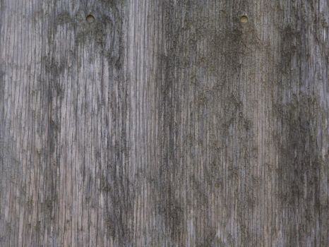 Weathered plywood [4] by thatguyfromabove