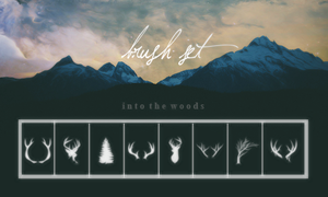 brush set: into the woods by Sixxtear