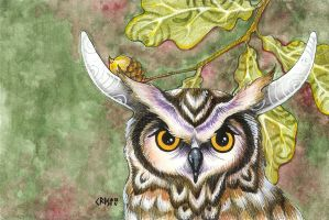 Horned Owl by Hierognosis