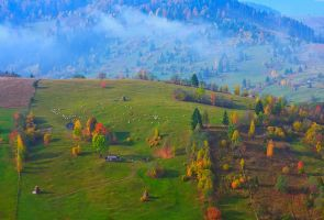 Autumn Colors. by lica20
