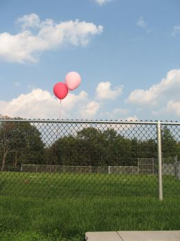 two pink balloons. by anniegetmygun