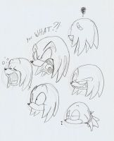 Knuckles heads by ThePandamis