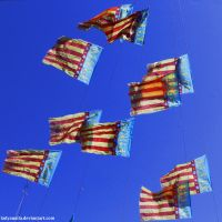 55. Flags by LadyAnaila