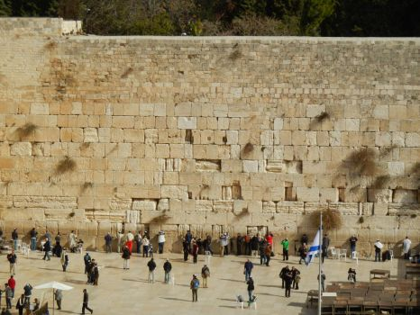 The Western Wall from Afar by wayne234