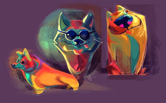 Corgs by Tigermint