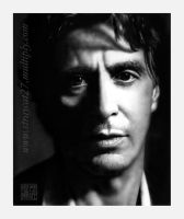 Pacino by straycat27