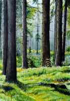 Swedish Forest- Watercolor by IsabelleMaria