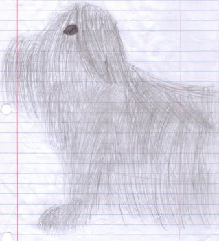 Schnauzer Doodle by Emo-cat9