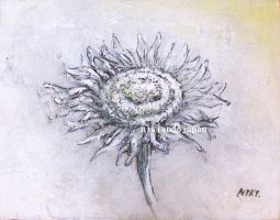 White sunflower 3 by NikiAndo