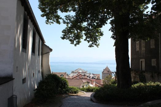Roofs of Nyon by Jewl1