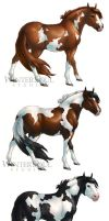 Breed Stickers- Paint Horse by soulofwinter